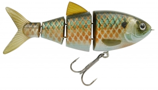 "Swimbait BBZ-1 4"" Shad FL"